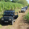 Excursion 4x4 guadeloupe